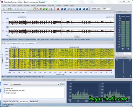 Acon Digital Media Acoustica Premium v7.0.56