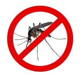 Sivri Sinek Kovma Programı indir