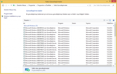Windows 8.1 Update 2 AIO (6in1) Ağustos 2014 indir