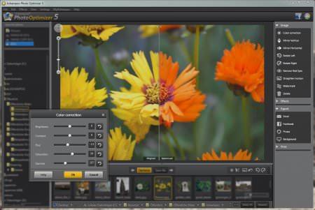 Ashampoo Photo Optimizer 6 Türkçe Katılımsız Full indir