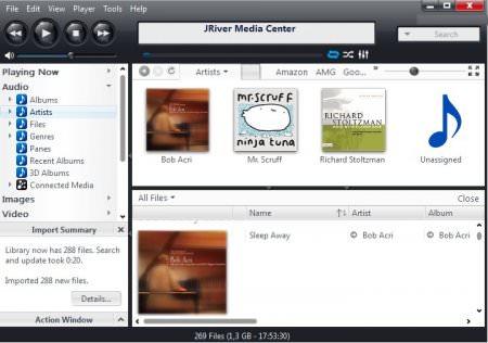 JRiver Media Center v22.0.13