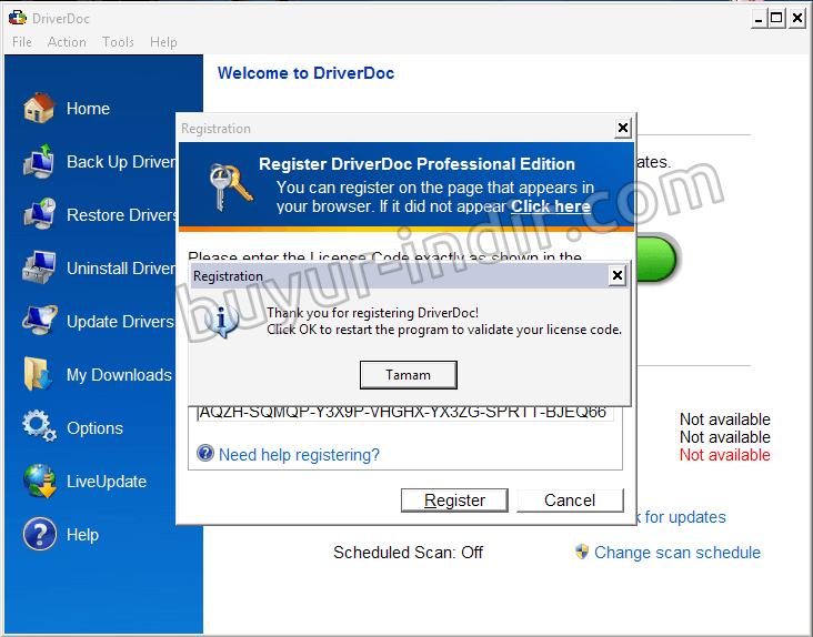Driver doc лицензионный ключ