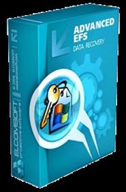 Elcomsoft Advanced EFS Data Recovery Pro v4.5