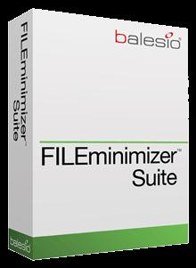 FILEminimizer Suite v8.0