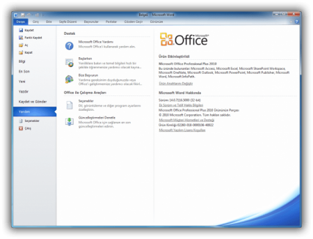 Microsoft Office 2010 Professional Plus Türkçe Portable