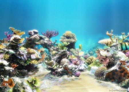 Sim Aquarium Premium v3.8.63