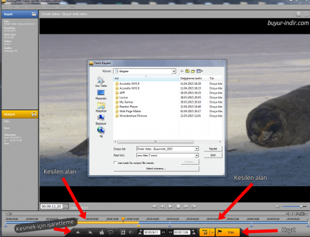 SolveigMM Video Splitter Business Edition v6.1.1611.1