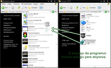 Process Lasso Pro v8.9.8.90
