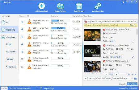 EagleGet v2.0.4.8 Türkçe