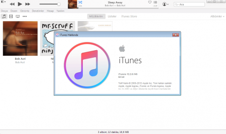 Apple iTunes v12.6.1 Türkçe