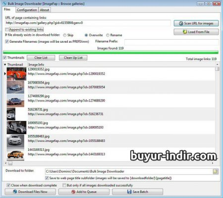 Bulk Image Downloader v4.90 Full