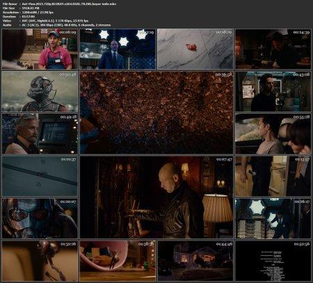 Ant-Man | Karınca Adam | 2015 | 720p | DUAL | MKV