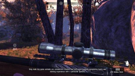 Cabela's Big Game Hunter: Pro Hunts Resimli Kurulum