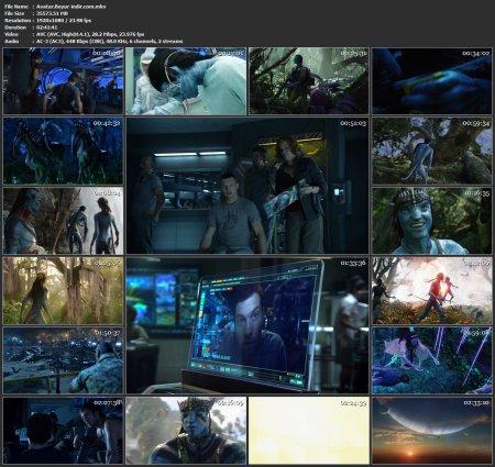 Avatar | 2009 | 1080p | TR | MKV