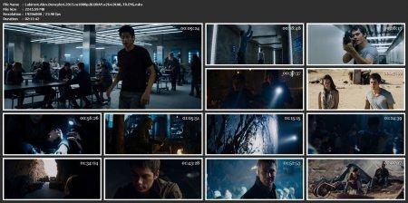 Labirent: Alev Deneyleri | 2015 | 720p | MKV