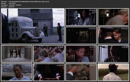 Esaretin Bedeli | 1994 | 480p | XviD | AVI
