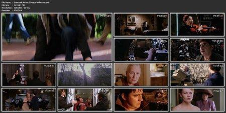 Örümcek Adam 2 | 2004 | 480p | AVI