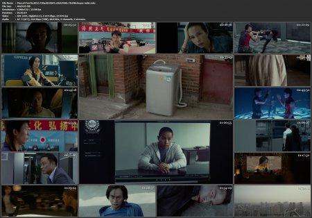 Man of Tai Chi   2013   720p   DUAL   MKV