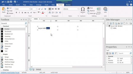 WYSIWYG Web Builder v11.6.4 Türkçe