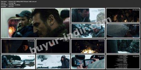 Gri Kurt 2011 BRRip XViD Türkçe Dublaj