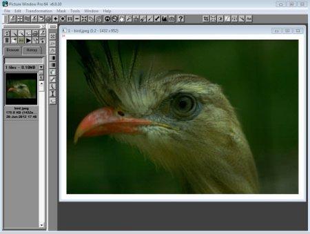 Digital Light & Color Picture Window Pro v7.0.18