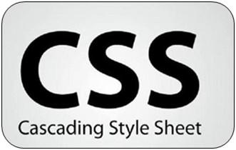 CSS Eğitim Seti Türkçe Chip